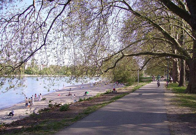 Parkinsel, Ludwigshafen