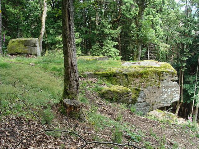 Schornsteinfelsen im Pfälzerwald