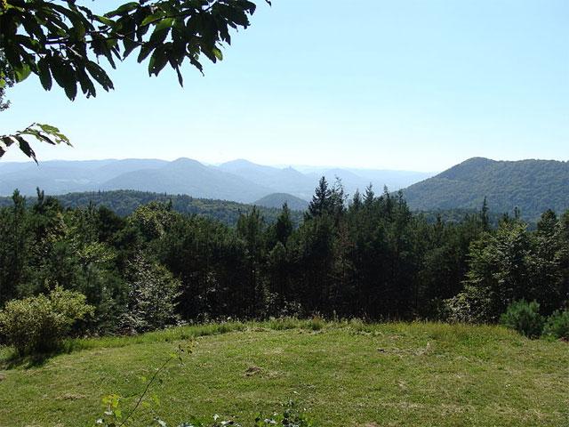 Aussichtspunkt Trifelsblick, Pfälzerwald