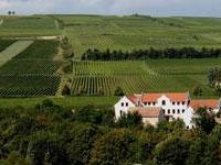 Ferienhaus Rheinhessen